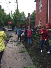Neighbors and students helping to plant